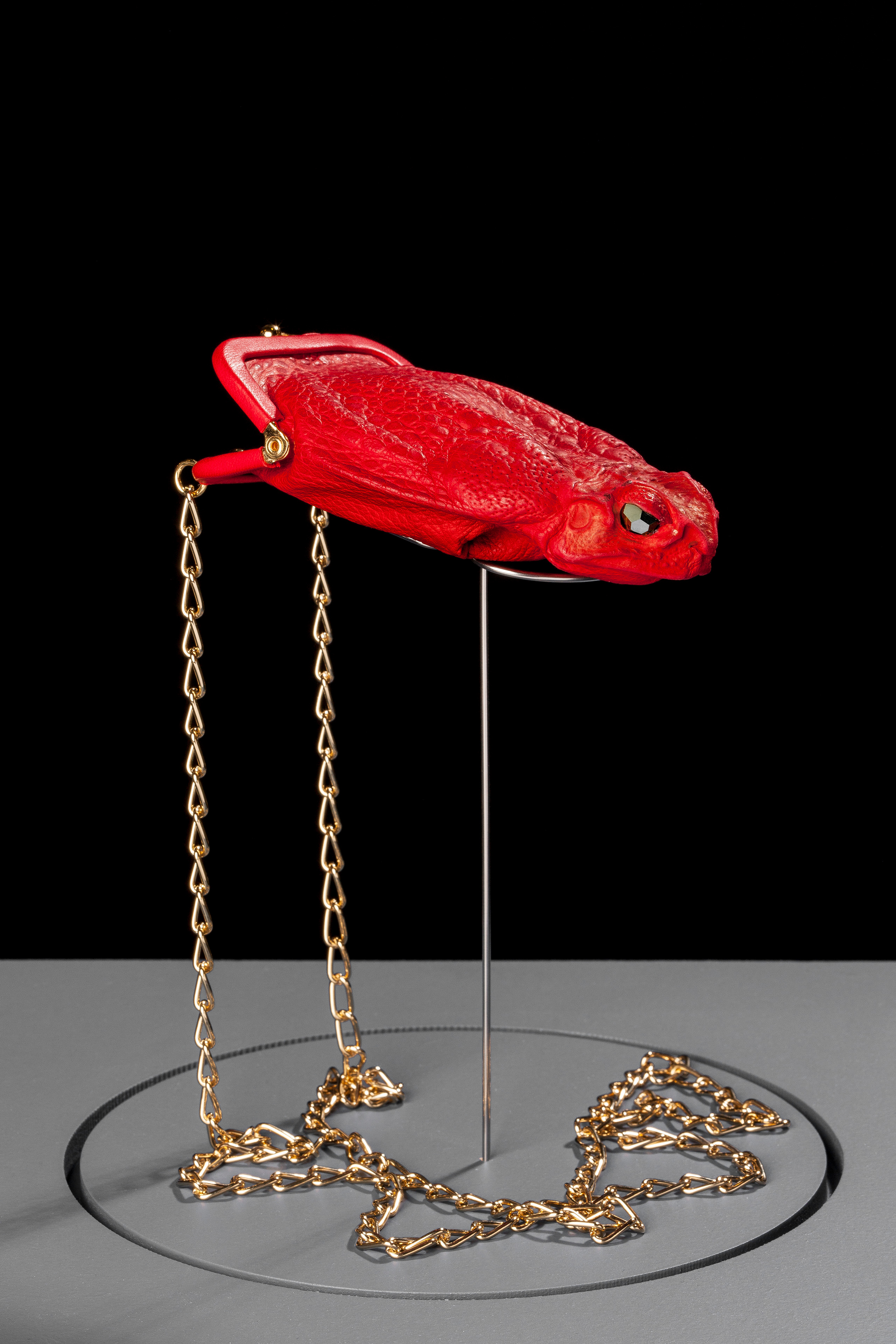 red purse frog